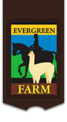 Evergreen Farm